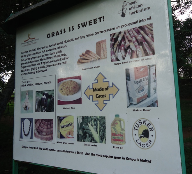 Nairobi Botanic Garden's Environmental Education