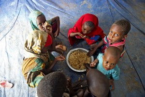'Food versus Fuel' Debate to Aggravate Hunger for World's Poorest