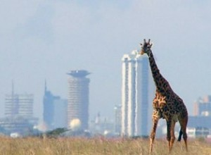 Kenya's Nairobi is the only city in the world with a natural game park.