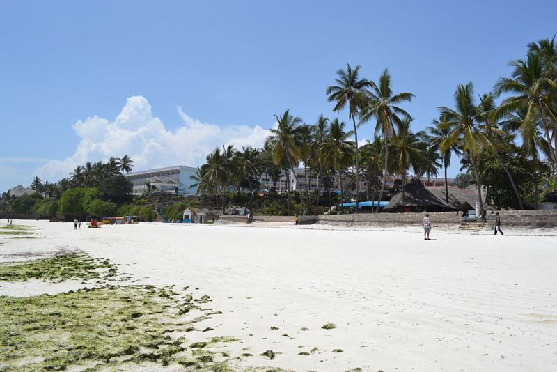 Nyali Beach and Mombasa Beach Hotel
