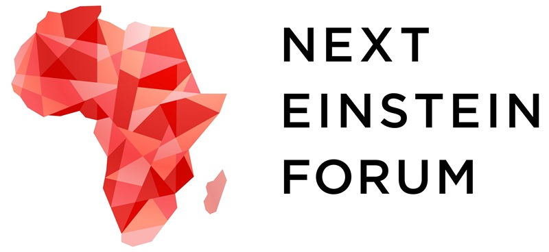Next Einstein Forum logo