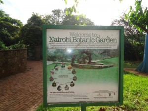 Improve Your Health at a Nairobi Public Garden