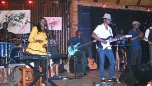 Blue Sugarcane band