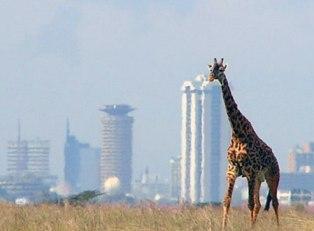 Kenya Hosts Milestone Tourism Events as Egypt Encourages Domestic Tourism
