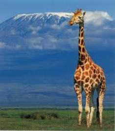 Tanzania Targets Southeast Asia and the Pacific Rim Tourists