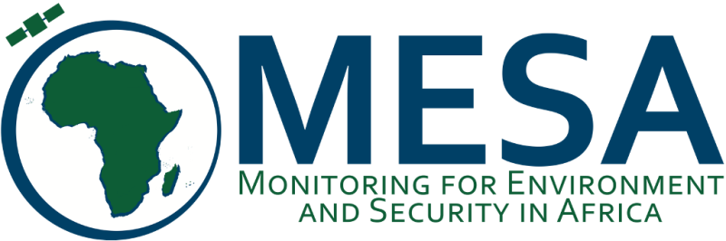 Monitoring for Environment and Security in Africalogo
