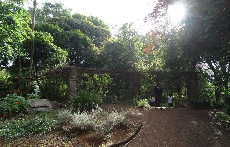 Experience Heritage in a Botanic Garden