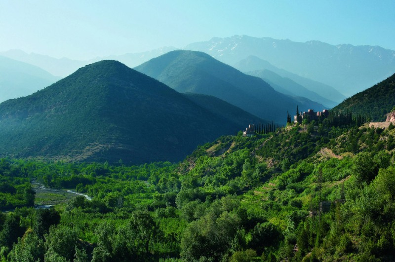 Sculpting the Scents of Morocco's Mountains
