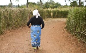 Wairimu V, 65, was gang-raped in a camp for the Internally-Displaced Persons in Kenya. Human Rights Watch image.