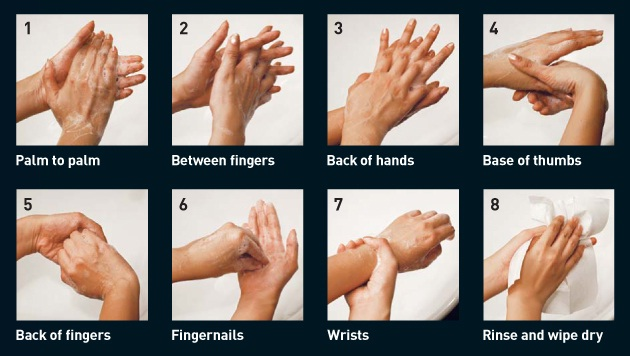 Why and How to Wash Our Hands